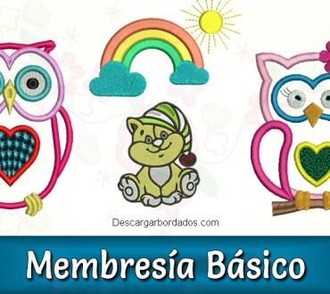 Membresía básico